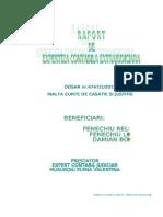 153190630-Expertiza-contabila