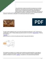 reduccion eco acustico.pdf
