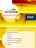 Malaria falciparum