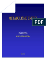 IT 26 - Metabolisme Energi - BS