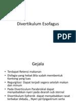 Divertikulum Esofagus