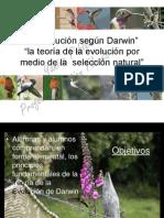 Mapas Para Darwin2013
