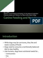 canine feeding and nutrition