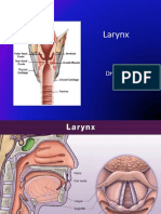 Blok 6 - IT 18 - Larynx - MBA