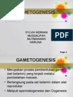 2-gametogenesis