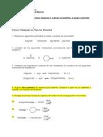 Guia de Adicion Nucleofilica Al Grupo Carbonilo