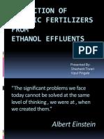 Production of Organic Fertilizer From an Ethanol Effluents