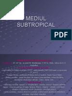 Mediul Subtropical Clasa a Xi-A