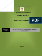 TRABAJO FINAL AUDITORIA AMBIENTAL AA.pdf