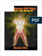 Mantak Chia - Bone Marrow Nei Kung - Iron Shirt Chi Kung III