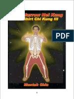Mantak Chia - Bone Marrow Nei Kung - Iron Shirt Chi Kung III