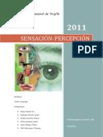 Sensacion y Percepcion[1]