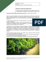 Proyecto_Final_2013_final.pdf