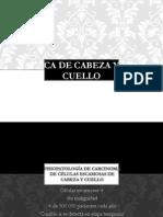 Pato QX CA Cuello y Cabeza
