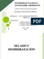 Deshidratacion y Secado _ Sandra _ Naty y Mirco