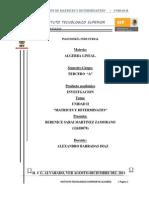 Matrices y Determinantes U2 Bere