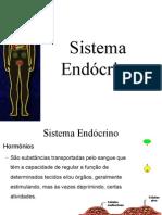 sistema endocrino (2)