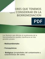 Factores Que Tenemos Que Considerar en La Biorremediacion