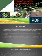 Metabolismo Vegetal 2013