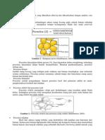 Sifat Petrofisika