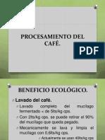 La Calidad Del Cafe 2 Parte