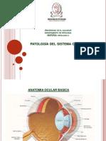 17 - Patologia Ocular