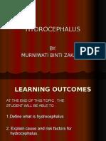 Hydrocephalus Updates
