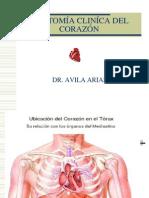 01- Anatomía clínica del corazón