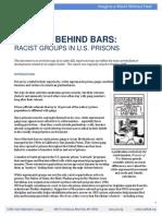 Bigotry Behind Bars Racist Groups in US Prisons2
