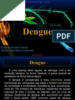 Dengue - Estudo de Doenças Tropicais