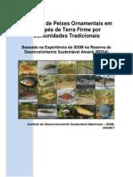 O Manejo de Peixes Ornamentais em Igarapés de Terra Firme por Comunidades Tradicionais