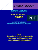 Expert Lecture (Anemia)