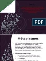 5.1 Metaplasmes