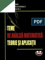 Matematica Analiza. Teorie si aplicatii