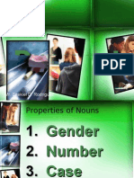 Properties of Nouns