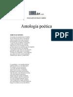 Antolog a Po Tica