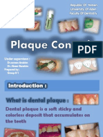 plaquecontrol-130320095853-phpapp01