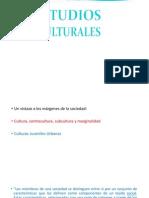Estudios Culturales 015 (1)