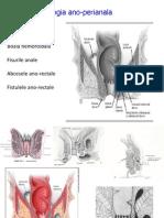 CURS Patologia Ano-perineala 1