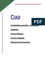Manual+Caldera+Beretta+Ciao+24+CSI,+CAI