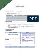 CAS Nº 377-2013