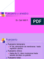 Puerperio y Anestro 2011