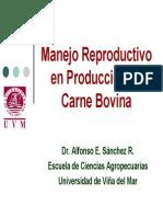 Manejo Reproductivo en Producción de Carne Bovina AS