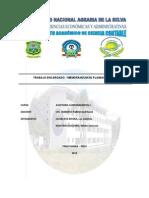 Auditoria Gubernamental i