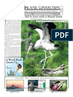 Island Connection - August 21, 2009