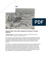 Visegrad Genocide