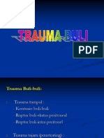 Trauma Buli