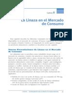 La Linaza en El Mercado de Consumo (2)