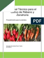 Procedimiento para la siembra de rábano y zanahoria original