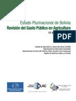 Bolivia Estudio de Gasto Publico Agricola2011